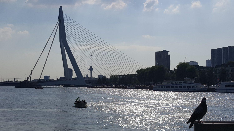 Bedrijfsuitje Rotterdam So Incentive 3
