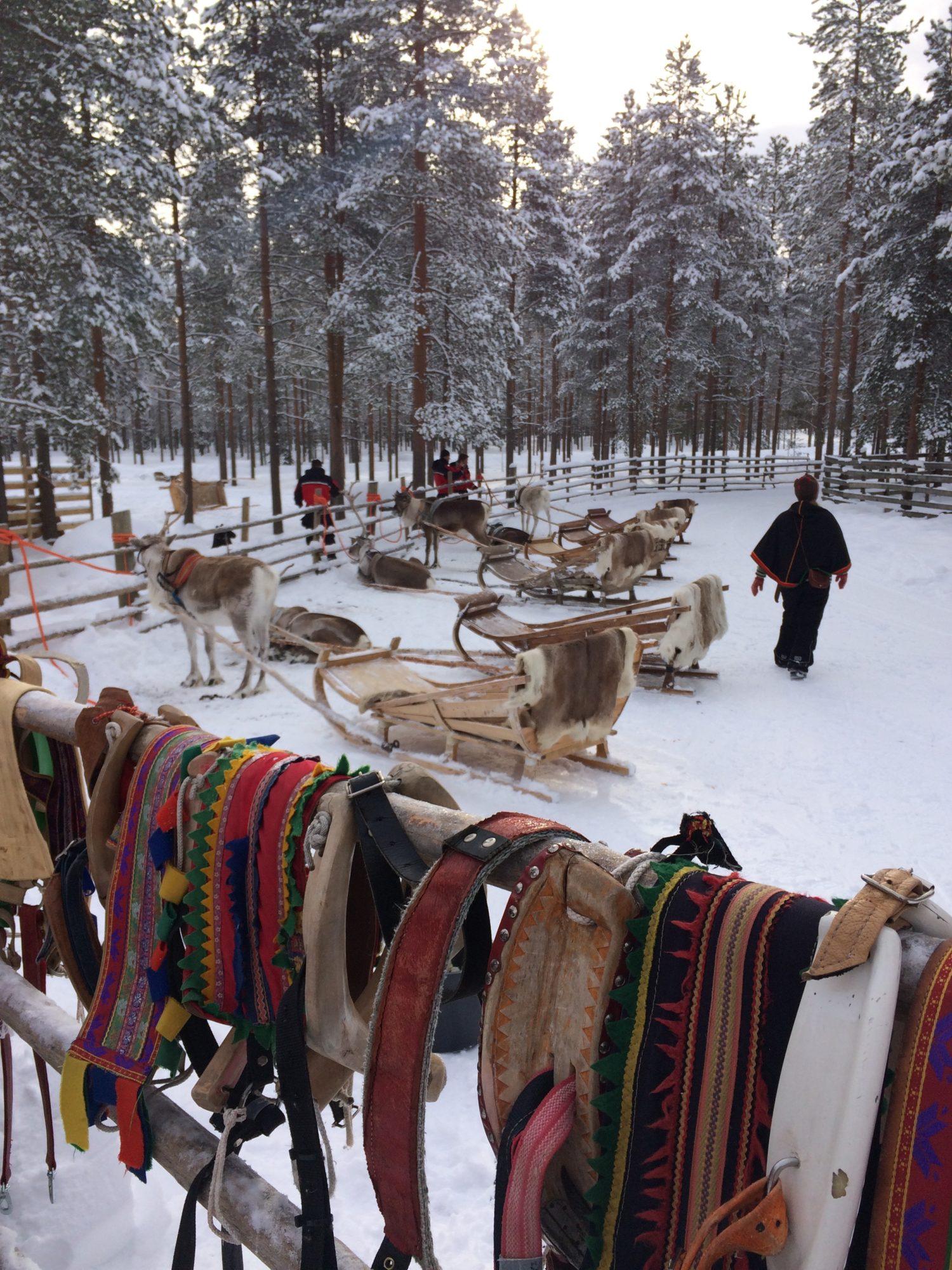 Bedrijfsuitje Lapland 5