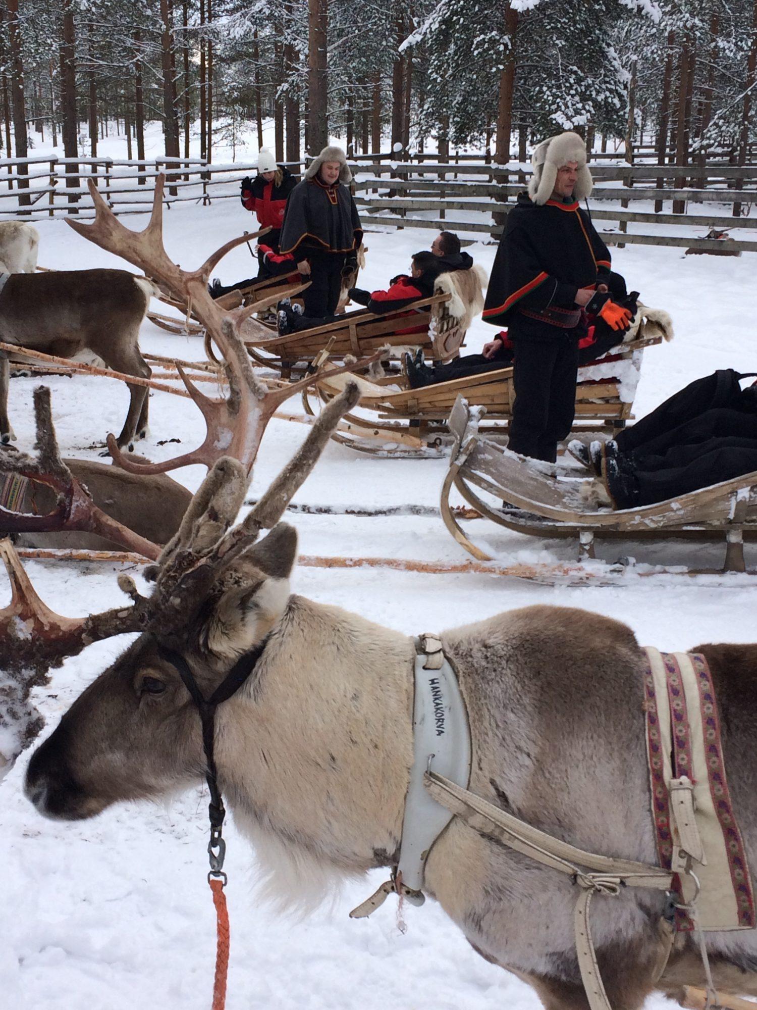 Bedrijfsuitje Lapland 6