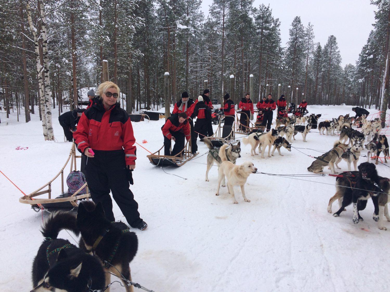 Bedrijfsuitje Lapland 15